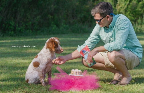Doggie 1st birthday-7