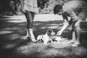 Doggie 1st birthday-9